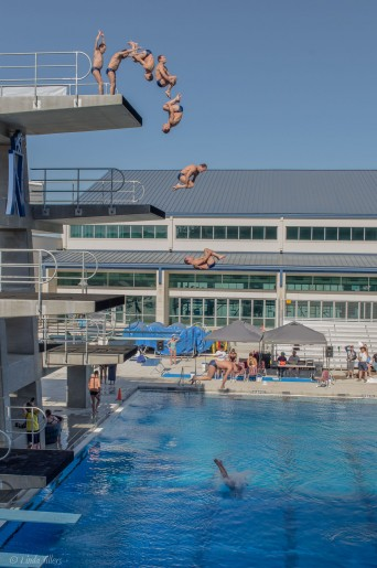 stanford-diving-club-spring-master-national-2014-frontflip-diver